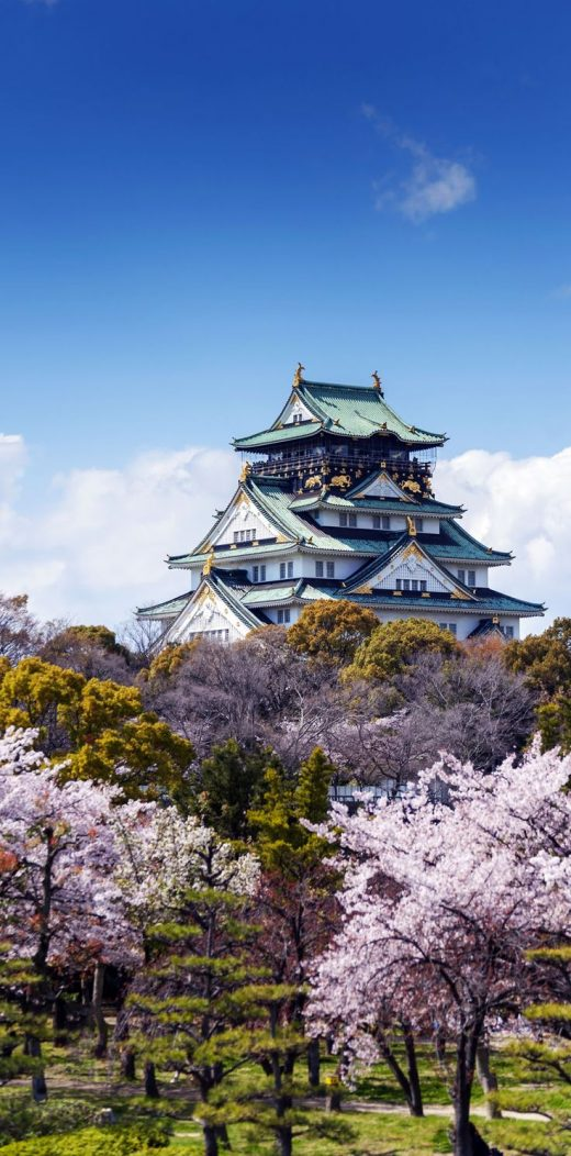 19 Reasons to Love Japanan an Unforgettable Travel Destination