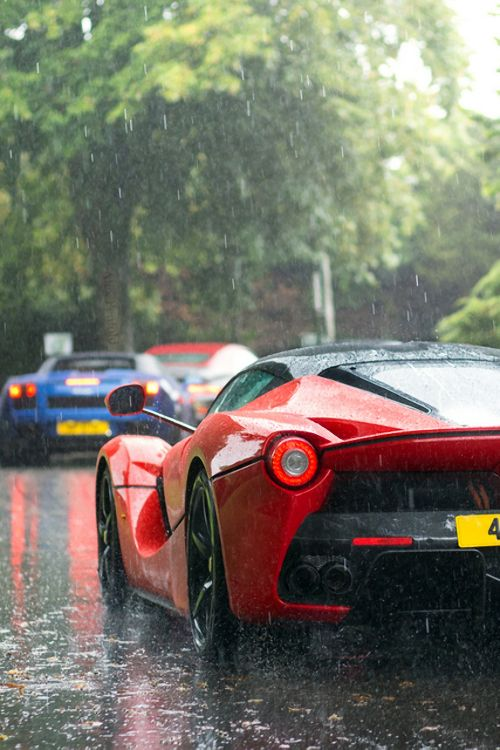 New Cars and Supercars
