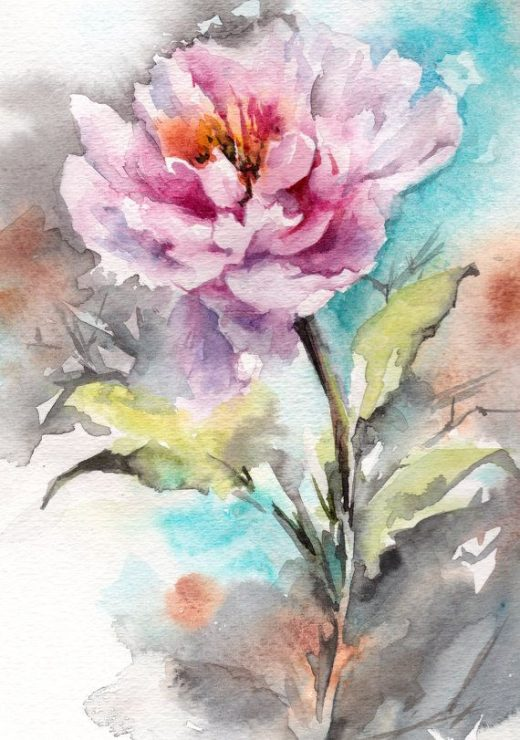 Peony watercolour painting