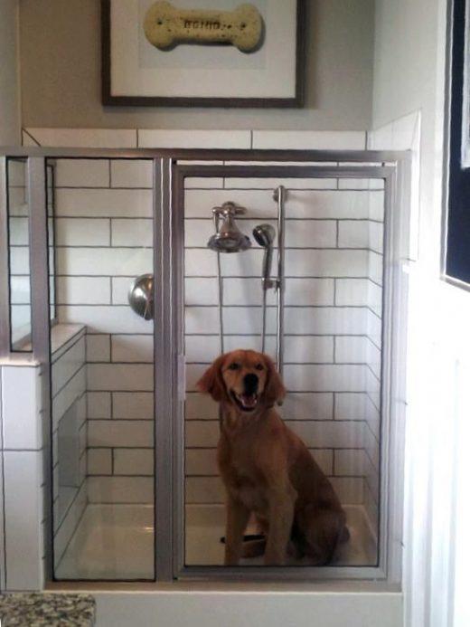 Homebuilder debuts new 'dog shower' in Houston