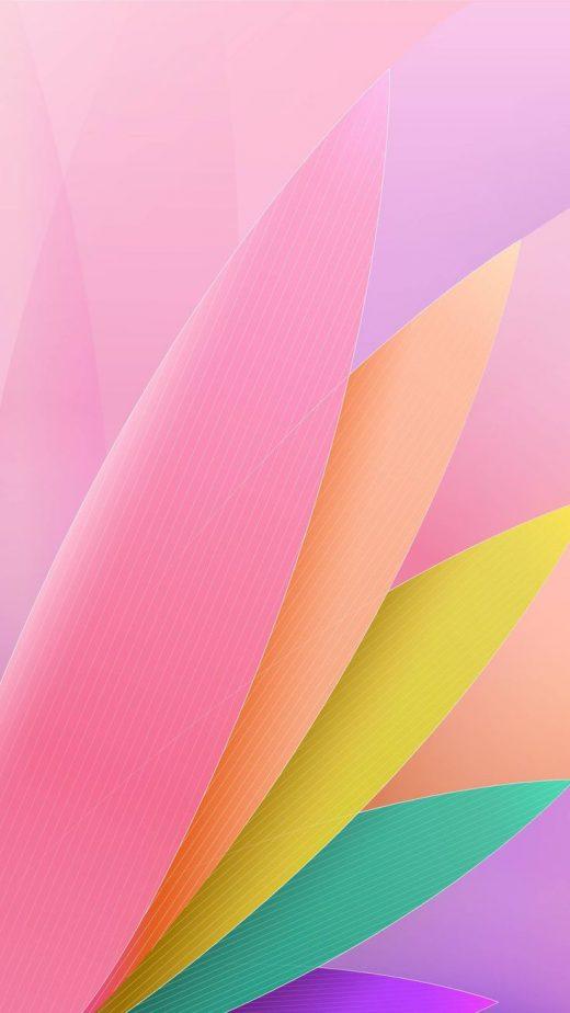 Petals Hd Wallpapers Download Hd In Link