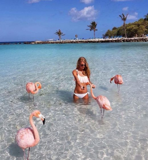 There's a Beach in the Caribbean Where You Can Swim with Flamingos