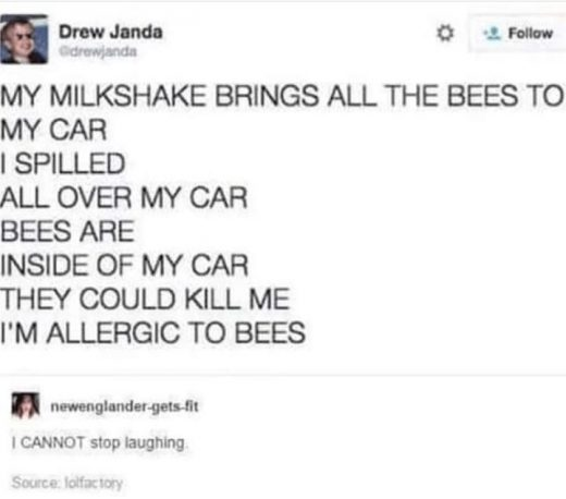 13 Funny Tweets All About Bees That Will Have You Buzzing With Laughter