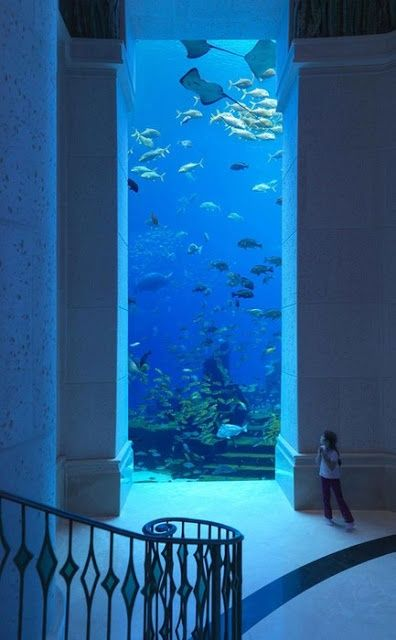4 Amazing Underwater Hotels You Need To Stay In!