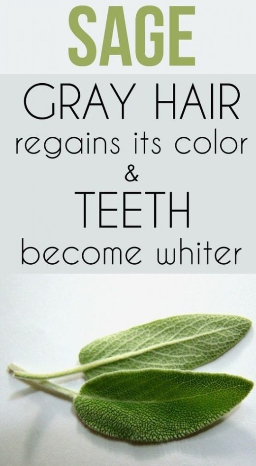 Sage – gray hair regains its color and teeth become whiter. Discover beauty re…
