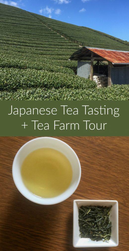 A Day in Japanese Tea Country: Visiting a Tea Farm Near Kyoto, Japan