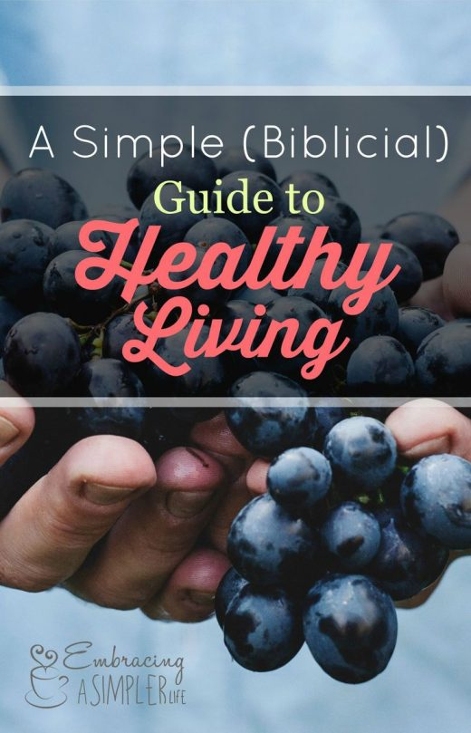 A Simple (Biblical) Guide to Healthy Living