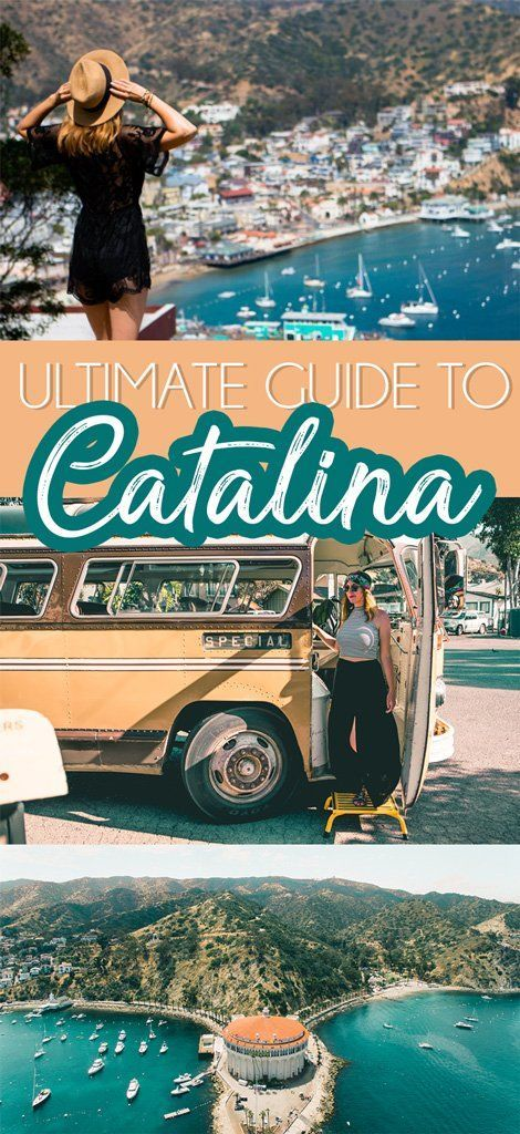 Things to do in Catalina Island the Girl Next Door You Didn't Know About