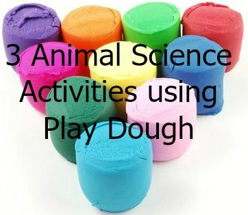 3 Great Animal Science activities that use Play Dough