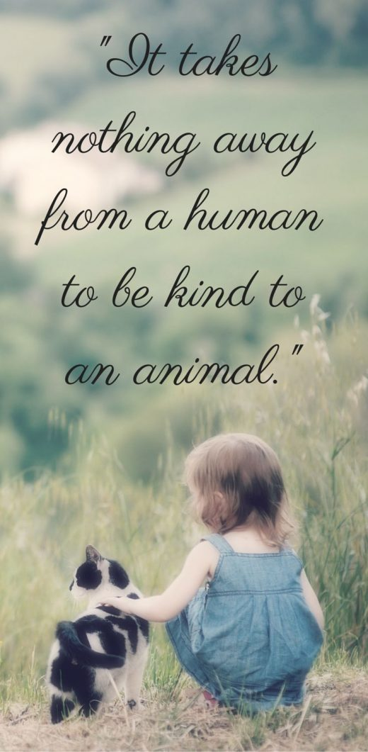 For Animal People