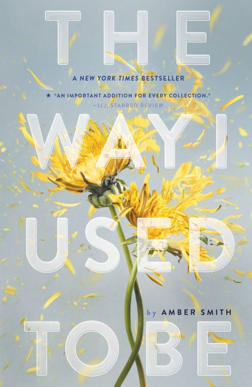 The Way I Used to Be (eBook)