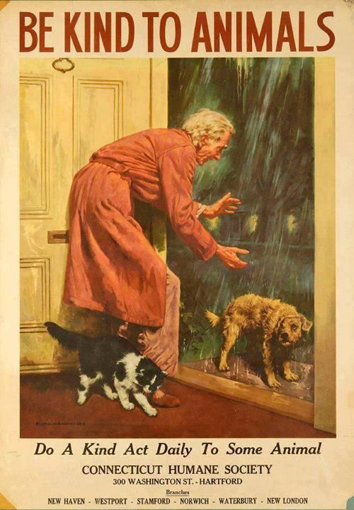 7 Vintage Posters That Prove Kindness To Animals Isn't A New Idea