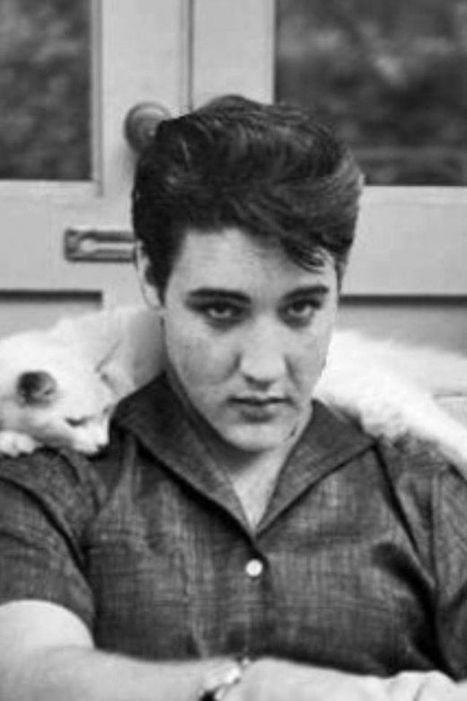 Elvis Presley hanging out with a cat.