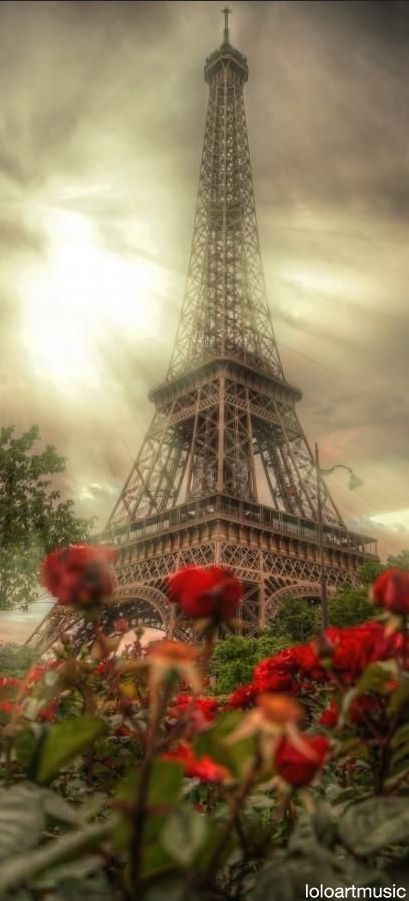 Eiffel Tower, Paris, France…this is an awesome picture…would love it on my w…