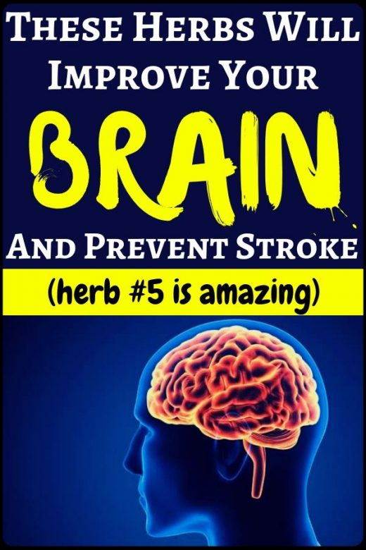 These herbs will improve your brain and prevent brain stroke – health and fitnes…