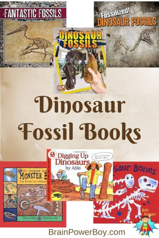 Dig into Dinosaur Fossil Books