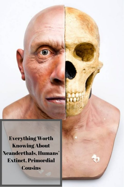 Everything Worth Knowing About Neanderthals, Humans' Extinct, Primordial Cousins