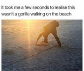 33 Fresh Funny Memes & Random Pics to Humor Up Your Day