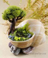 Take Your Pick! The #Top 50 Mini-Fairy #Garden Design Ideas                     …