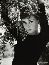 Audrey Hepburn – very stunning vintage angelic seeking Hollywood actress