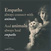 Empaths always connect with animals. And animals always heal empaths