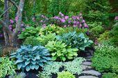 22 Best Design Ideas for Hosta Gardens – ideacoration.co