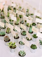 Everything You Need for a Cool Cactus Wedding!