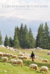 Hiking in Romania's Carpathian Mountains