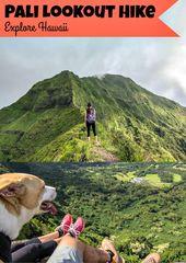 Pali Lookout Hike