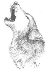 Bildergebnis für Wolfskizze #cuteanimalstodraw Bildergebnis für Wolfskizze – #…