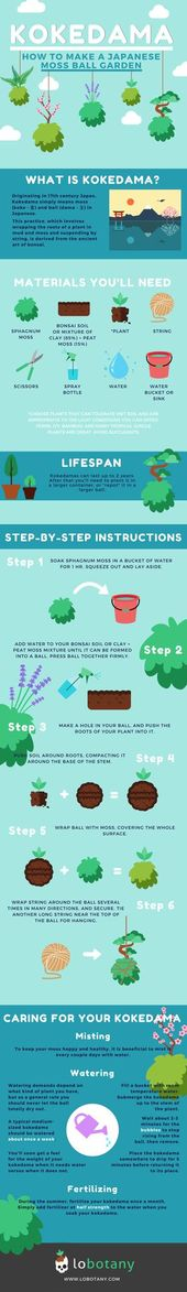 DIY Kokedama: How to Make a Japanese Moss Ball Garden [Infographic