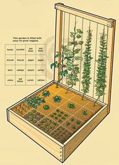 Inspirational designs and plans for vegetable garden beds – Elaine