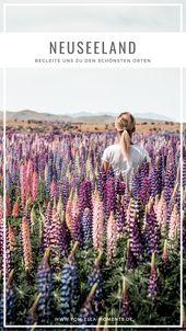 Neuseeland Südinsel • Unsere Rundreise Highlights der Südinsel