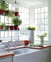 Oh the plants. My dream kitchen will have lots of shelves for plants (and wheat …