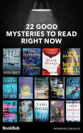 22 Mystery Must-Reads for Fans of Rizzoli and Isles