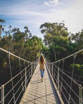 This Park In San Diego Has a 375-Foot Suspension Bridge That You Can Walk On