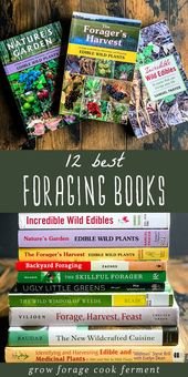 12 Best Books on Foraging and Wildcrafting
