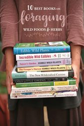 The Ten Best Books on Foraging Wild Foods and Herbs
