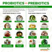 Probiotics and Prebiotics: Everything You Need to Know