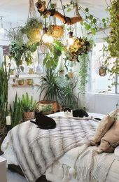 The Plants That Will Actually Thrive in Your Bedroom, According to Plantfluencers