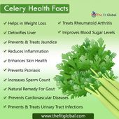 Celery Health Facts